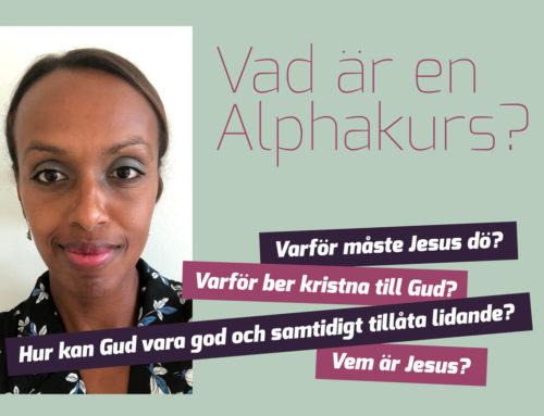 Vad är en Alphakurs?